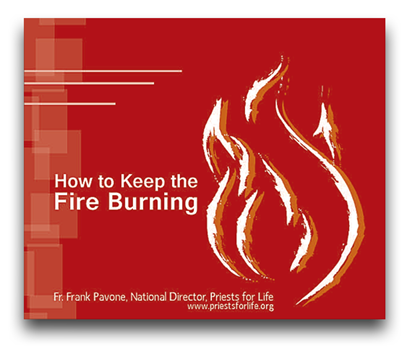 Picture of How to Keep the Fire Burning
